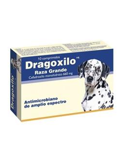 Drag Pharma Dragoxilo Raza Grande 660m