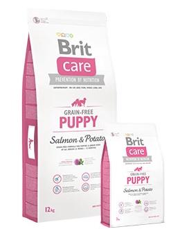 Brit Brit Puppy Salmon